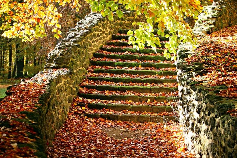 autumn-1797385_1920