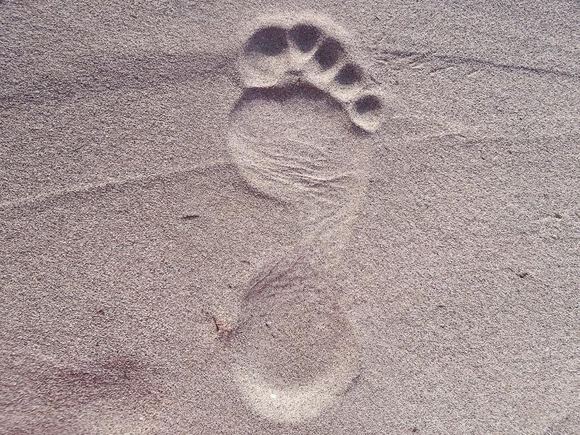 footprint-2624609_1920