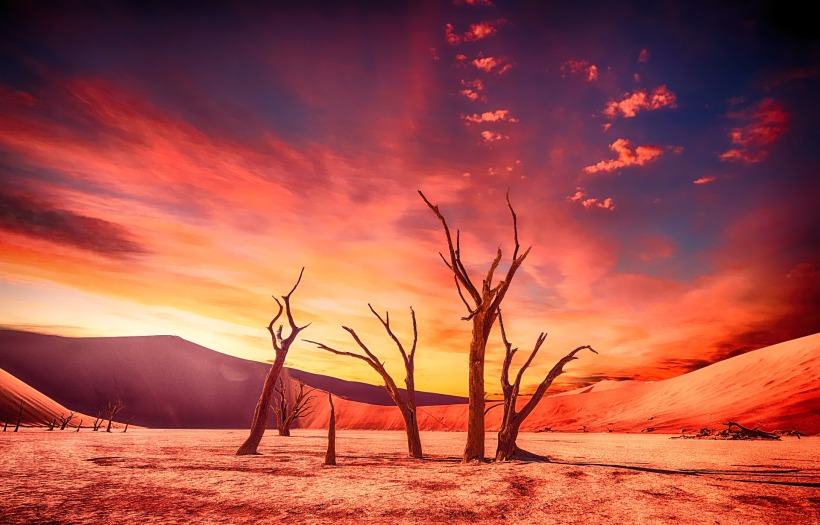 desert-2497135_1920