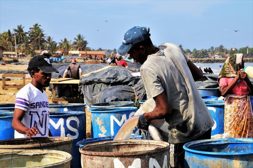 the-fishermen-3249447_1920