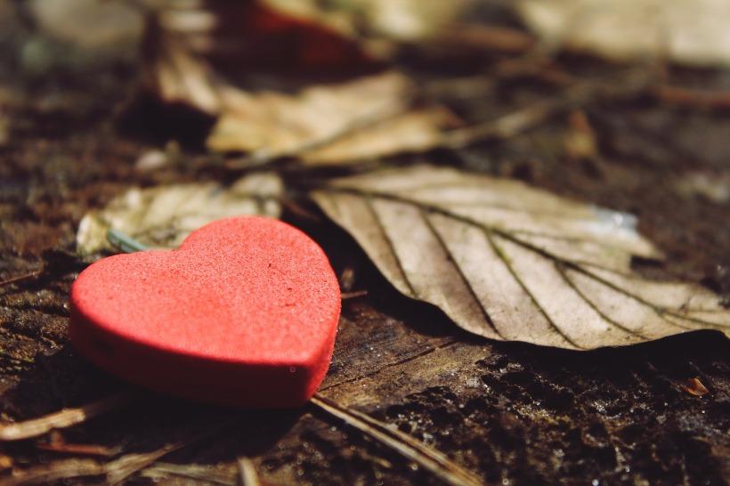 heart-1318850_1920 (1).jpg